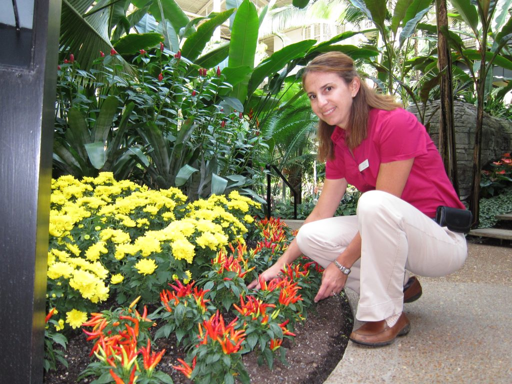 Got a favorite color? Megan McDugald gets to change up the shades of the hotel's flower beds, inside and out, a few times a year.