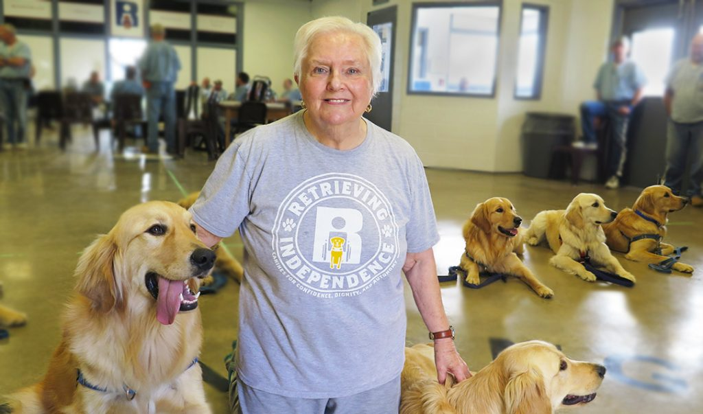 brenda dew with golden retrievers in training