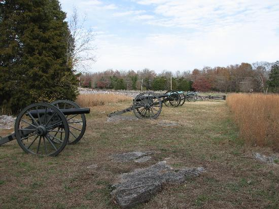 Cannons on the Stones River Civil War Battlefield