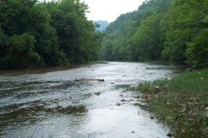 A Tennessee river bend with slow-moving water