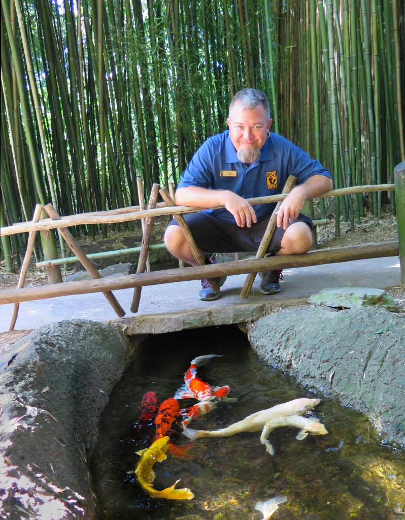 J.G. Auman on a bridge above the Nashville Zoo's many koi fish in their stream