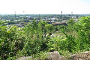 View from Fort Negley